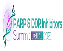 4th Annual PARP & DDR Inhibitors Summit