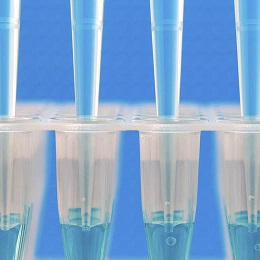 Freeze Drying / Lyophilization Service