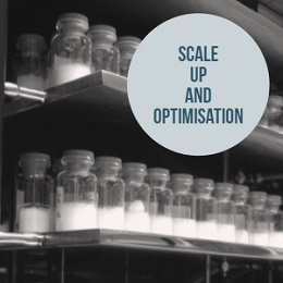 Scale-Up and Optimization Service